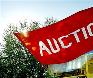 How to buy prior to auction day